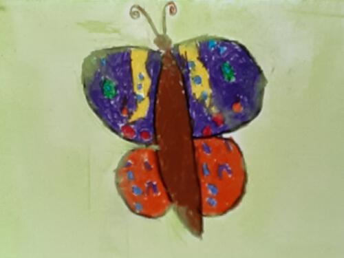 Juli - Schmetterlinge